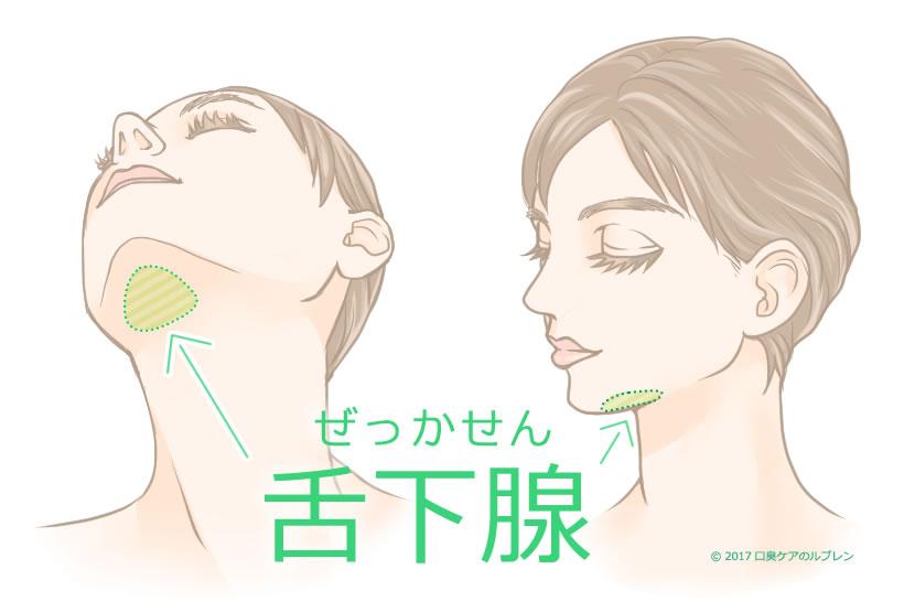 膿詮(臭い玉)や舌苔などの汚れが取れる唾液腺マッサージ