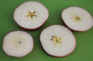 輪切りのりんご